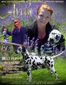 Ayela CDF Ad Designed by Wendy Reyn Winconline