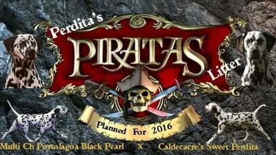 Piratas Perdita's 2016 Litter